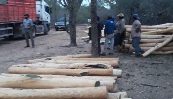 Ambiente y la Policía unifican esfuerzos en la lucha contra el comercio ilegal de Palo Santo