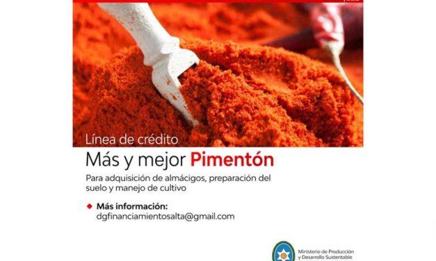 Financiamiento para inversiones destinadas al cultivo de pimiento para pimentón