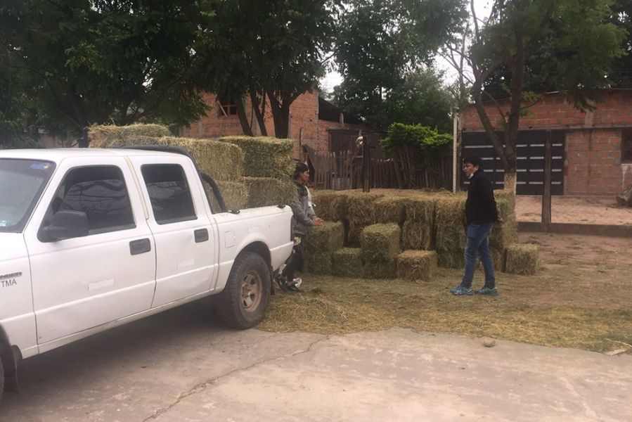 Pequeños productores de Santa Victoria Este recibieron forraje por la Emergencia Agropecuaria