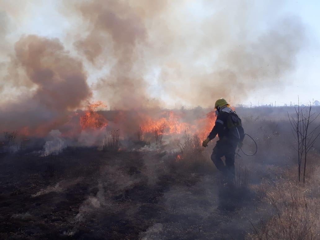 Primer concurso para la prevención de incendios forestales en Salta y Jujuy